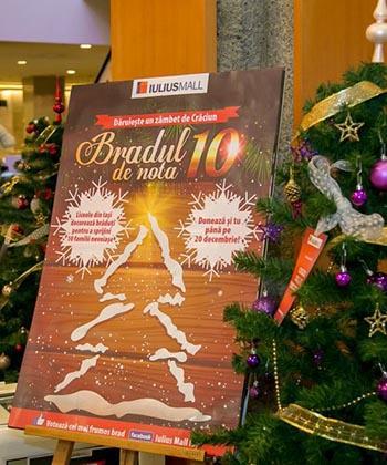 Copii nevoiași vor primi în dar de la Iulius Mall nouă brazi de Crăciun, împodobiți de liceenii ieșeni
