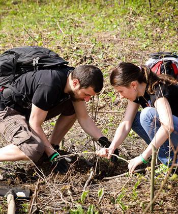 120 de angajați ai companiilor din clădirile de birouri UBC Palas au plantat 3.000 de copaci într-o zonă din apropierea Iașului